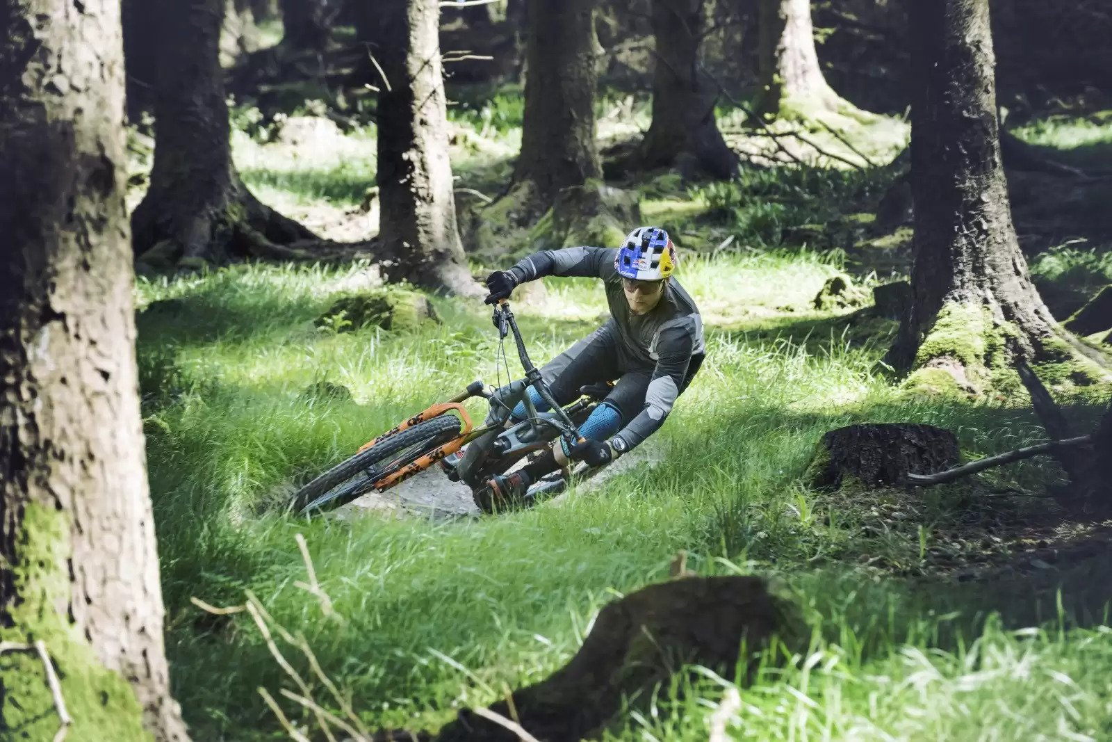 Mountainbike til Sport | Køb Mountain Bike Online| Jupiter ekstra